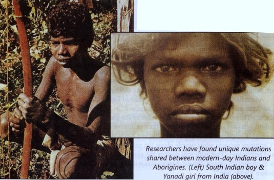 4-Dravidian-Tamil-Genetic-Link-to-Australia-Copy.jpg